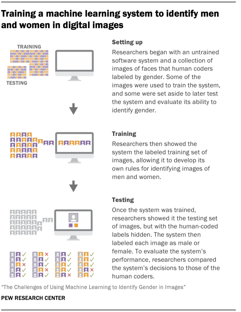 Regardless of training data, all models were better at identifying one gender than the other