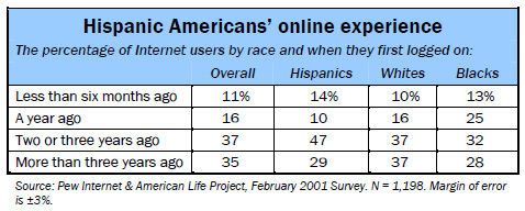 Hispanic Americans' online experience