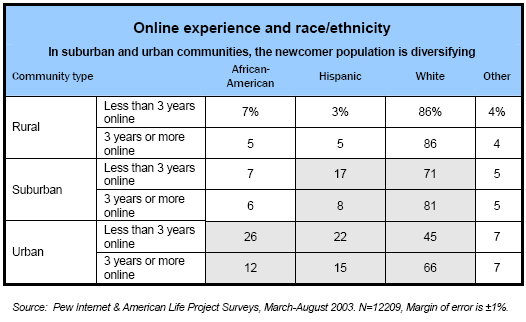 Online experience and race/ethnicity