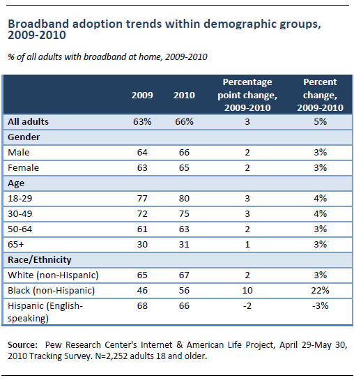 Adoption trends within basic demographics